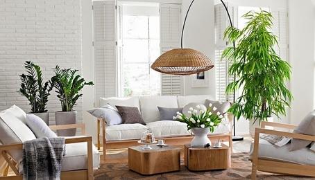 Giúp không gian nhà mát mẻ hơn với những cách đơn giản sau